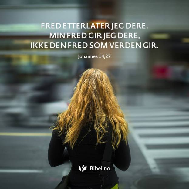 (Foto: Bibelselskapet / Facebook)